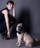 Cavalheiro do cão do Pug fotos de stock