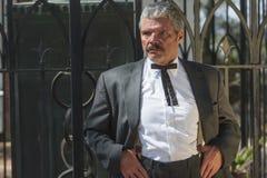 Cavalheiro do sul Imagem de Stock