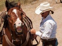 Cavalier de cheval images libres de droits