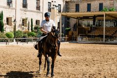 Cavalier de cheval montant un cheval andalou brun dans le St royal historique Photos stock