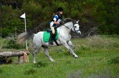 Cavalier de horseback avec le poney images stock