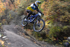 Cavalier de Mini Downhill sur la course Photo stock