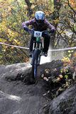 Cavalier de Mini Downhill sur la course Photos libres de droits