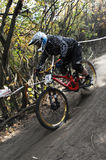 Cavalier de Mini Downhill sur la course Photo libre de droits