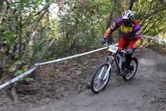 Cavalier de Mini Downhill sur la course Photos stock
