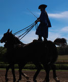 Cavalier debout silhouetté de cheval Image stock