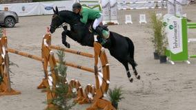 Cavalier et cheval à l'exposition sautant sur l'événement équestre clips vidéos