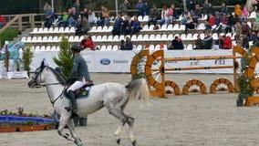 Cavalier et cheval à l'exposition sautant sur l'événement équestre banque de vidéos