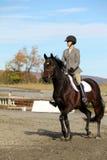 Cavalier féminin sur le cheval de Brown en automne Images stock