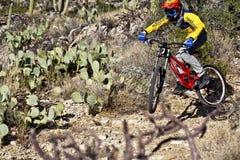 Cavalier incliné de vélo montant vers le bas Image stock