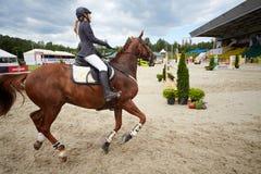 Cavalier sur le cheval aux concours dans l'exposition sautant CSI3 Vivat Images libres de droits