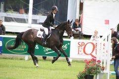 Cavalier sur le cheval aux Frances de Saumur Images stock