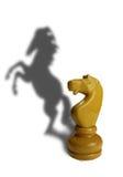 Cavaliere bianco con un'ombra di arte Fotografia Stock