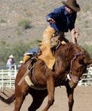 Cavaliere Bucking di Bronc del rodeo Fotografia Stock