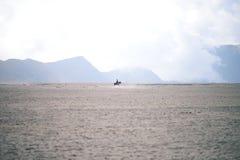 Cavaliere a cavallo nel deserto contro il contesto del mou fotografia stock