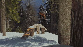 Cavaliere che fa scorrere su una figura in parco archivi video