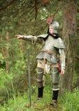 Cavaliere Commanding Immagini Stock Libere da Diritti
