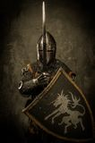 Cavaliere con la spada e lo schermo Immagini Stock
