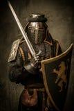 Cavaliere con la spada e lo schermo Immagine Stock