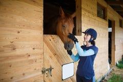 Cavaliere con un cavallo Fotografie Stock Libere da Diritti