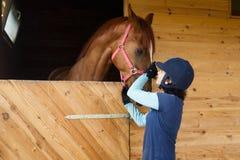 Cavaliere con un cavallo Fotografia Stock Libera da Diritti