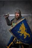 Cavaliere con una spada e uno schermo Fotografie Stock