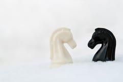 Cavaliere dei pezzi degli scacchi Immagine Stock