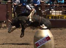 Cavaliere del Bull del rodeo Fotografia Stock Libera da Diritti