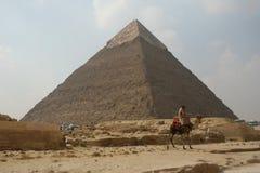 Cavaliere del cammello dell'Egitto Fotografia Stock