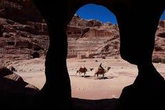 Cavaliere del cammello nel PETRA fotografia stock