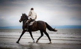 Cavaliere del cavallo della spiaggia Fotografie Stock