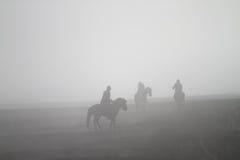 Cavaliere del cavallo della tempesta di sabbia Immagini Stock