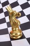 Cavaliere dell'oro in corona Fotografia Stock