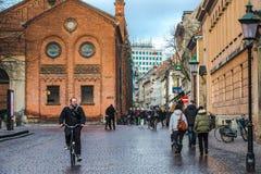 Cavaliere della bicicletta Fotografia Stock