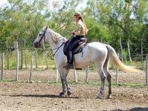 Cavaliere della donna montato sul cavallo bianco Immagine Stock Libera da Diritti
