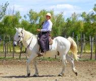 Cavaliere della donna montato sul cavallo bianco Fotografie Stock Libere da Diritti