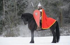 Cavaliere dello Slavic fotografia stock libera da diritti