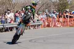 Cavaliere di acrobazia del motociclo - impennata Immagini Stock