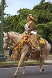 Cavaliere di Pa'u del palomino Fotografia Stock