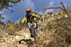 Cavaliere in discesa della bici che guida giù la traccia Fotografie Stock Libere da Diritti