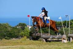 Cavaliere e cavallo del paese trasversale Immagini Stock Libere da Diritti