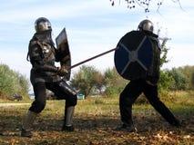 Cavaliere e panoplia 10 Immagini Stock
