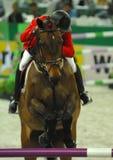 Cavaliere equestre I immagine stock