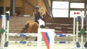 Cavaliere equestre sullo stallone che esegue salto sopra l'ostacolo video d archivio