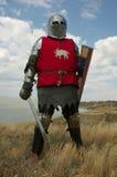 Cavaliere europeo medioevale immagini stock