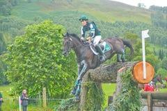 Cavaliere irlandese: Prove di cavallo internazionali 2011. Immagine Stock