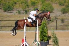 Cavaliere nell'esposizione di salto immagini stock libere da diritti