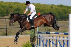 Cavaliere nell'esposizione di salto fotografia stock