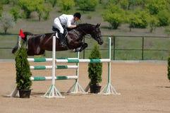 Cavaliere nell'esposizione di salto Immagini Stock