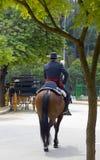 Cavaliere spagnolo Fotografia Stock Libera da Diritti